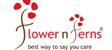 Flowernferns