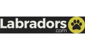 Labradors.com