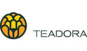 Teadora